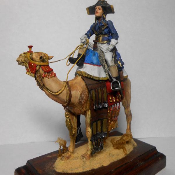 Наполеон на верблюде, Египетская компания